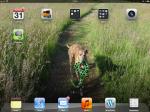 iPad Screenshot, paperless office